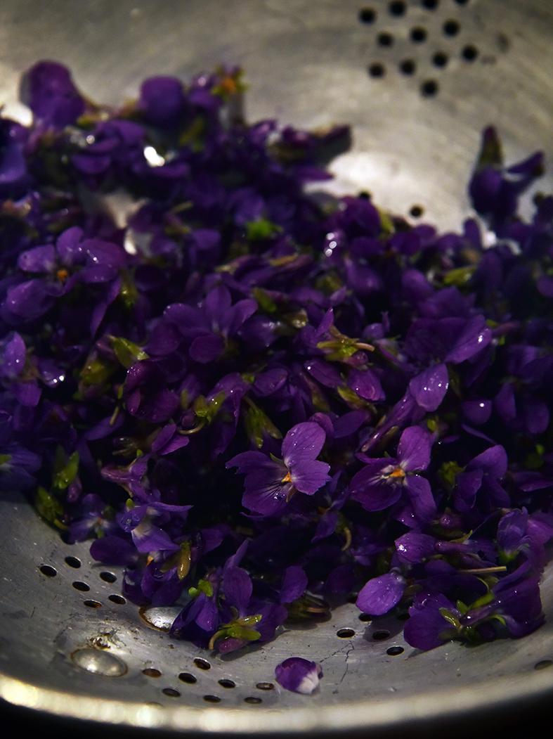Sirop de violettes violettes cristallis es les petits - Sirop de violette ...